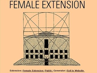 Cornelia Sollfrank «Female Extension»